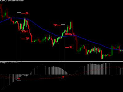 Виды сделок на валютном рынке